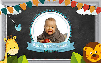 Baby Birth Timeline