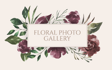 Floral Photo Gallery