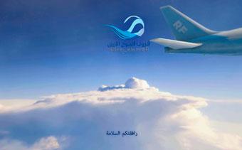 إظهار شعار الطائرة