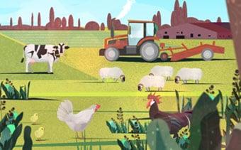 Organic Food Promo