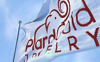 Realistic Flag Logo