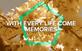 Memorial Video