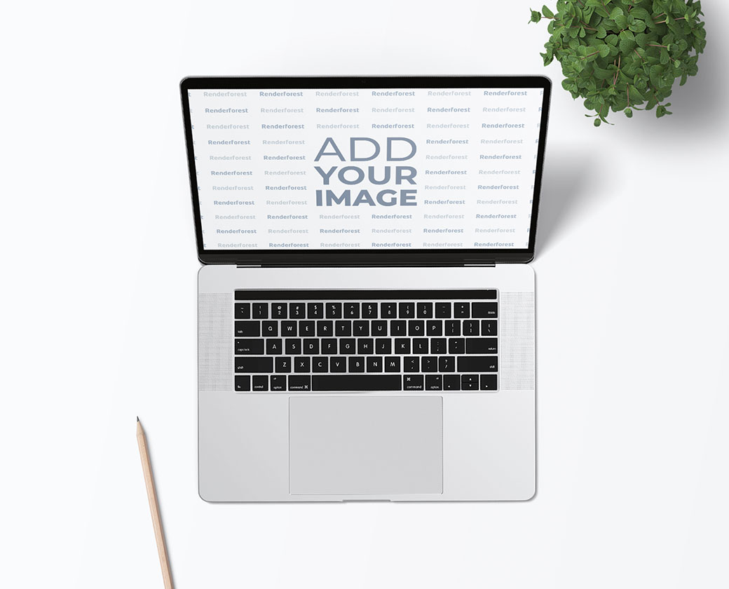 Laptop with a Pencil and a Plant