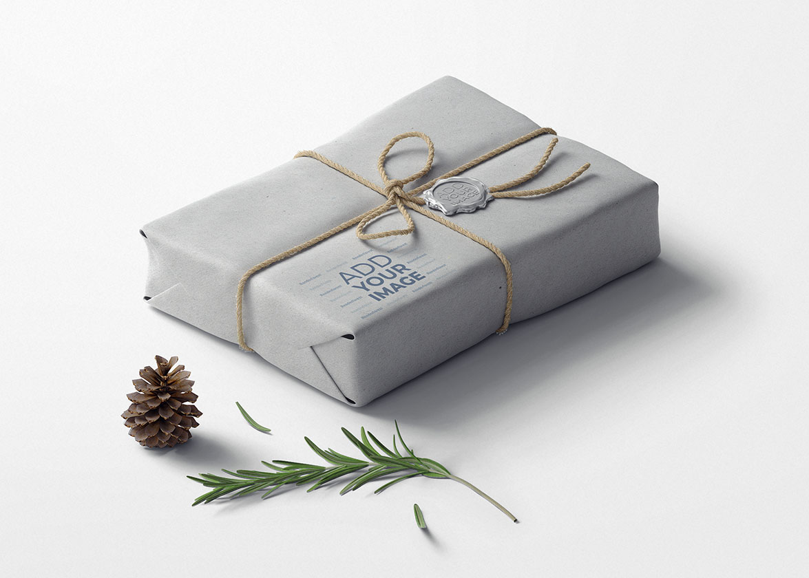 Christmas Package with a Fir Branch and a Cone