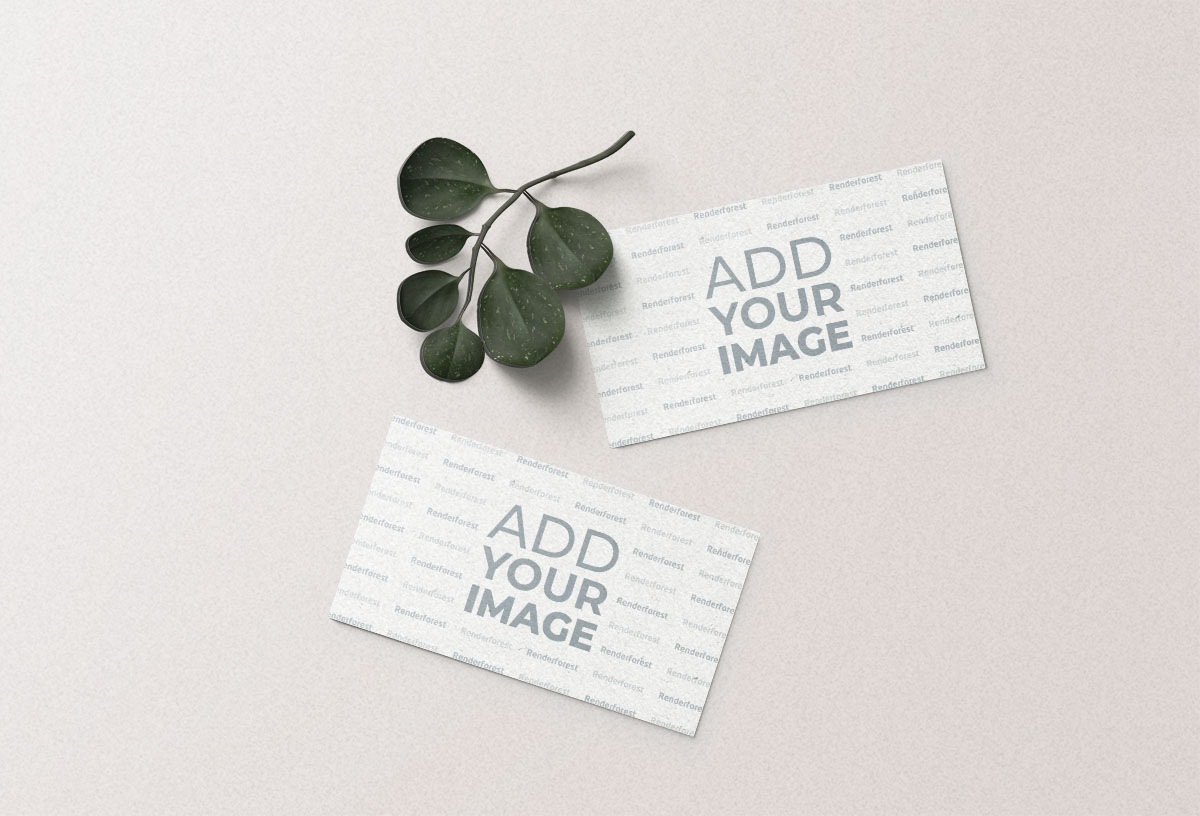 Two Business Cards with a Plant