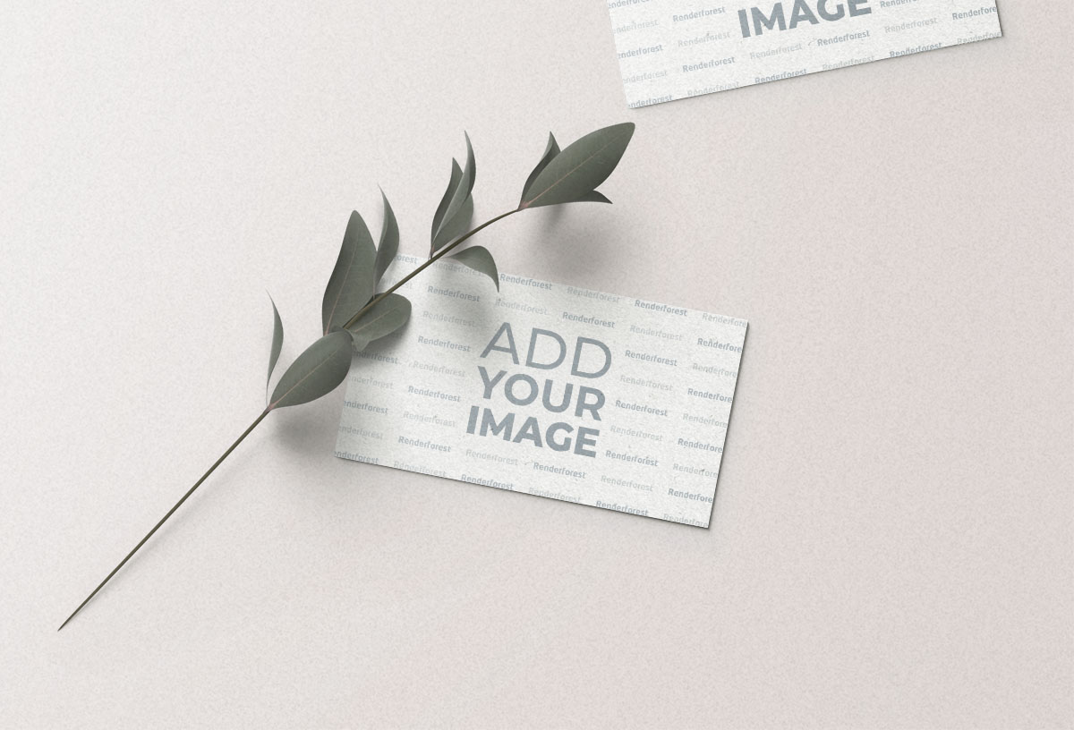 Two Business Cards and a Plant Branch