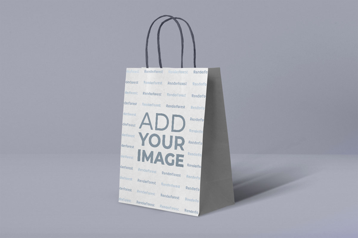 Small Paper Bag with Twisted Handles